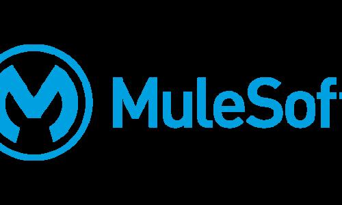 Mule Software